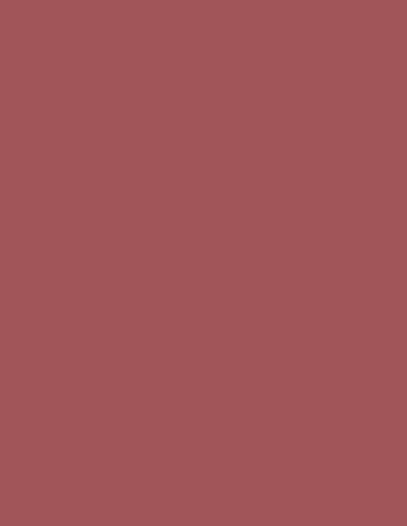 anta star terracotta 794x1024 1