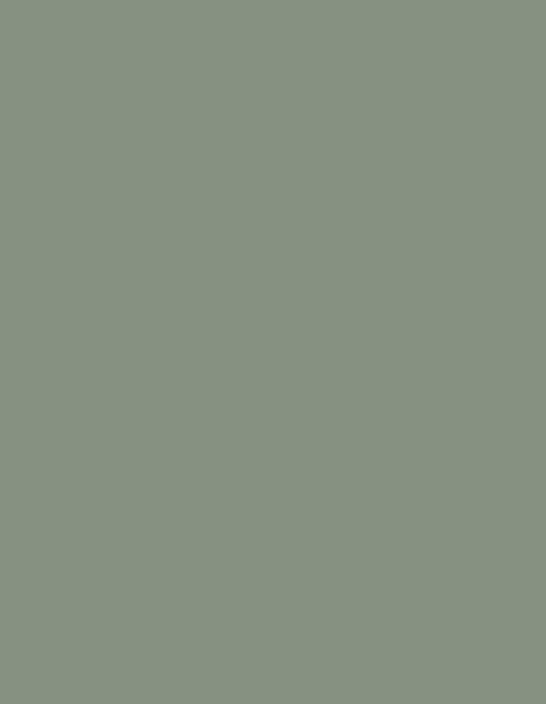 anta star verde muschio 794x1024 1